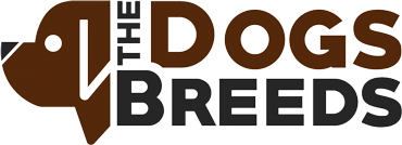 The Dogs Breeds